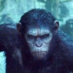 3D Planeta dos macacos: A guerra | Divirta-se mais | Tudo sobre ...