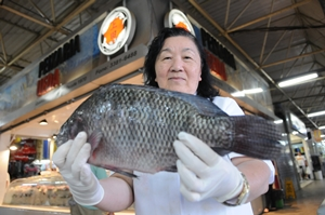 'As pessoas estão conhecendo agora o peixe de água doce' ( Iano Andrade/CB/D.A Press)
