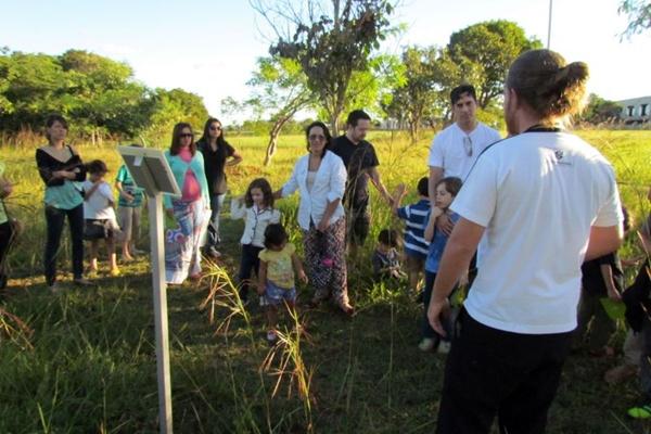 No passeio, as crianças descobrem sobre as relações entre as árvores e a cultura brasileira: aprendizado ( Renato Acha/Divulgação)