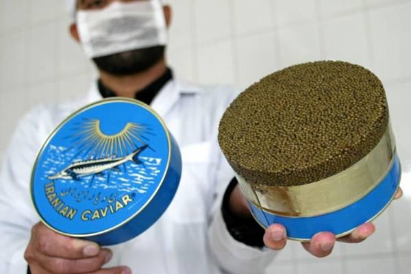 O produto  iraniano est� entre os mais caros do mundo (Caren Firouz/Reuters - 9/11/03 )