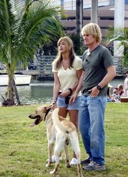 O filme Marley & Eu é uma comédia romântica ( 20th Century Fox/Divulgação)