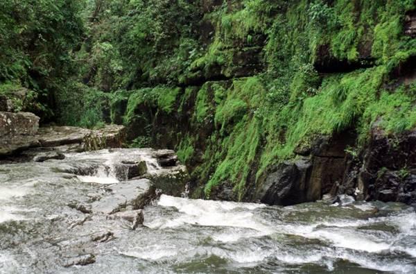 A Chapada dos Veadeiros e as cachoeiras que podem revigorar o folião (Zuleika de Souza/CB/D.A Press)