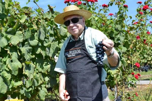 O escritor gaúcho ressalta a qualidade do vinho brasileiro (Fabiano Mazzotti/Conceitocom Brasil)
