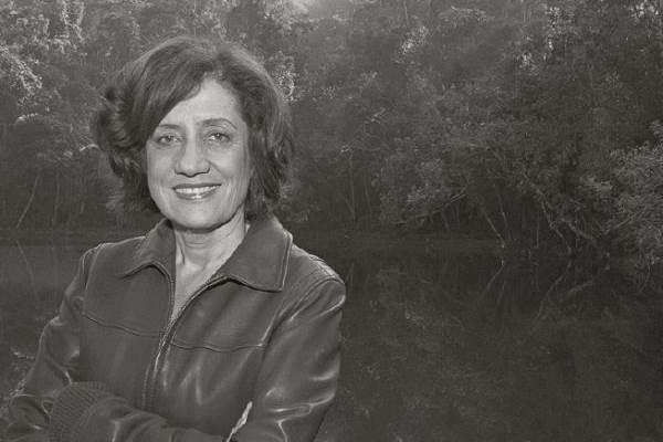 Miriam Leitão, autora do livro Tempos modernos (Sergio Abranches/Divulgação)