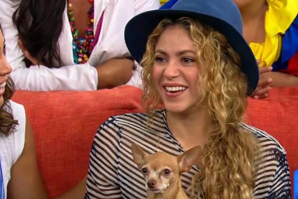 Shakira se comoveu com manifestações de carinho dos fãs: ''é por causa disso que eu sigo adiante'' (Reprodução/Youtube)