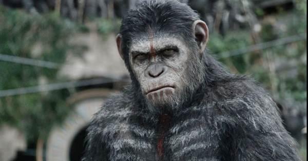 Cena do filme Planeta dos macacos - o confronto (Fox Filmes/Divulgação)