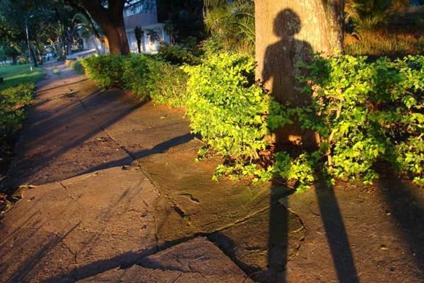 Usha Velasco expõe retratos de sombras: Um outro lado das coisas (Arquivo Pessoal)