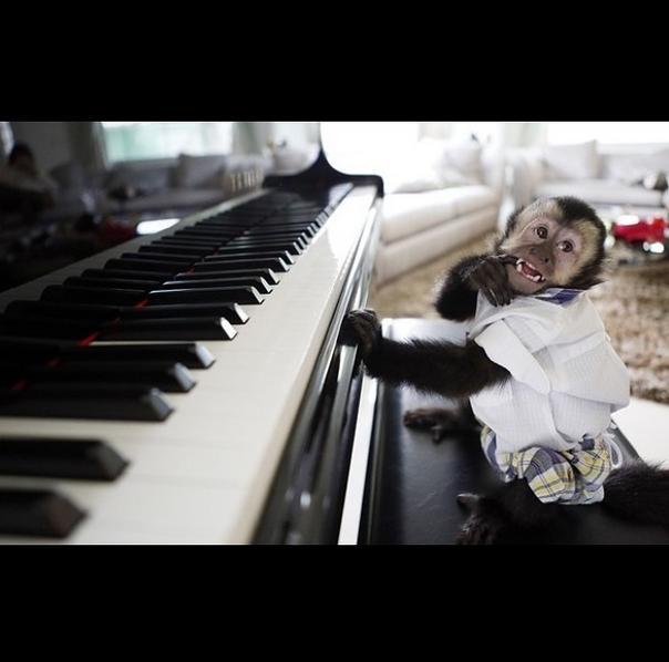 Twelves tocando piano na casa dos pais. Vida difícil não é? (Instagram/Twelves/Reprodução)