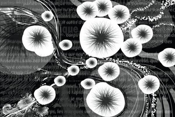 Em Interfaces, Nikoleta Kerinska recria imagens no computador (Nikoleta Kerinska/Divulgação)