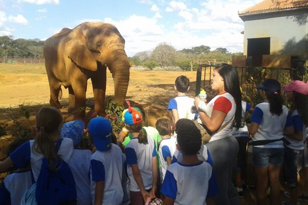 Passeio no Jardim Zoológico é uma das atividades programadas para a colônia de férias do Clube dos Previdenciários (Daniel Lima/Divulgação)
