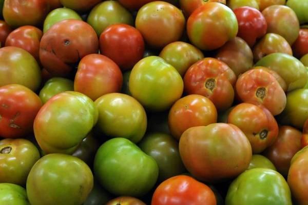 Frutas, verduras e ingredientes para diversas receitas atraem o público à Feira do Produtor de Vicente Pires  (Ed Alves/CB/D.A Press)