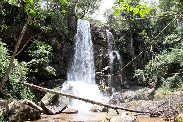 Parque Ecológico do Tororó (Hiram Vargas/Esp. CB/D.A Press)