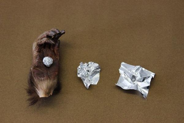Os dois mundos estão juntos nas obras expostas por Raquel Nava na Referência Galeria de Arte  (Raquel Nava/Divulgação)