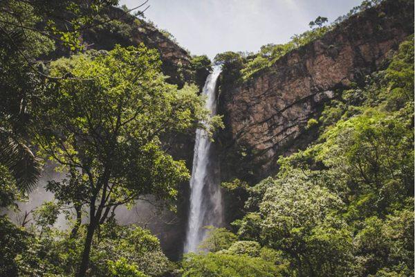 ( Iris Cruz/Divulgação)