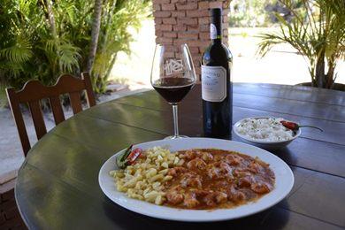 A uva italiana San Giovese é usada no vinho de Pinto Bandeira (Andre Violatti/Esp. CB/D.A Press)