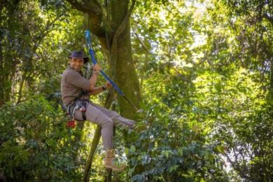 O programa Câmera selvagem, do Nat Geo, é uma opção para quem curte a natureza brasileira (NatGeo/Divulgação)