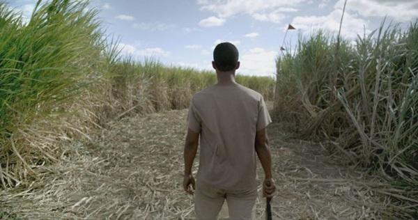 A trilha sonora ganha ares de protagonista em 'Brasil S/A' (Ivo Lopes Araújo/Divulgação)