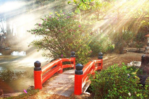 O espaço do Jardim Japonês proporciona contato com a natureza (Reprodução internet)