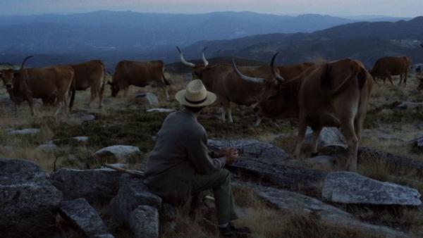 O filme 'Volta à Terra' acompanha a vida dos 49 habitantes de uma comunidade  (Reprodução/Internet)