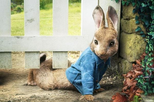 O protagonista de Pedro coelho chega a maltratar os outros animais  (Reprodução/Internet)