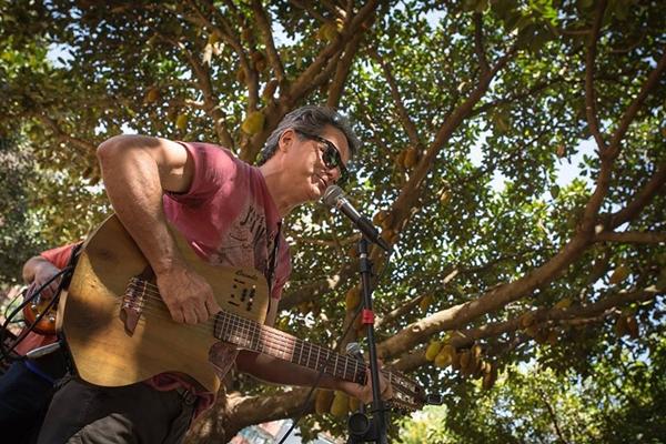 O músico Geraldo Carvalho será homenageado na edição de 2018 do Música na Árvore (Júlio Cecílio)