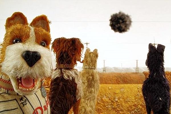 Animação de Wes Anderson tem o pulso forte característico do diretor (Indian Paintbrush/Divulgacao)