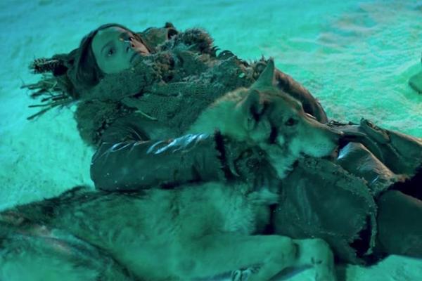 Alfa apresenta a amizade entre o jovem Keda e o lobo que o ataco (Columbia Pictures/Divulgacao)