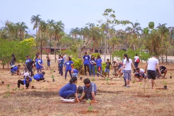 A meta do Green Move é plantar mil mudas de árvores do cerrado no Parque da Cidade (Fabiano Neves/Divulgação)