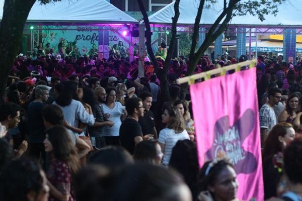 O bloco Vai com as Profanas participa do Imagina no SBS, na sexta e desfila no sábado, no SCS (Luis Nova/Esp. CB/D.A Press)