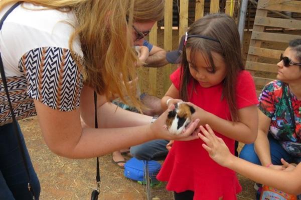 O projeto aproxima a criança do mundo rural  ( Proativa Assessoria/Divulgação)