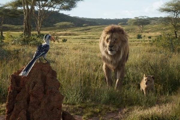 O Rei Leão: o visual da savana africana promete depurar ainda mais o esperado cuidado com as imagens do mais recente filme da Disney   (Disney Enterprises/Divulgação)