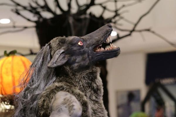 Aproveite o mês do Halloween e divirta-se com esse fantástico mundo dos monstros (Tábata Barbosa/Divulgação)